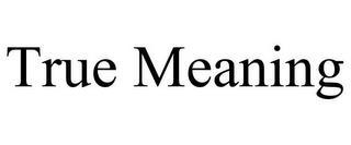 TRUE MEANING trademark