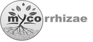 MYCORRHIZAE trademark