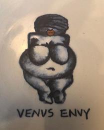 VENUS ENVY trademark