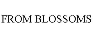 FROM BLOSSOMS trademark