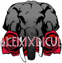 AKEM X DICUL trademark