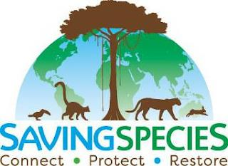 SAVING SPECIES CONNECT PROTECT RESTORE trademark