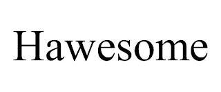 HAWESOME trademark