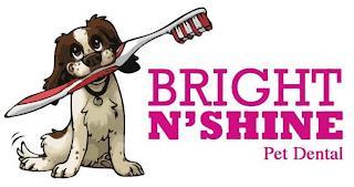 BRIGHT N'SHINE PET DENTAL trademark