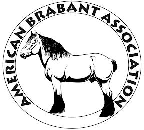 AMERICAN BRABANT ASSOCIATION trademark