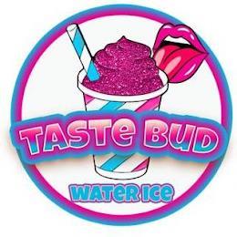 TASTE BUD WATERICE trademark